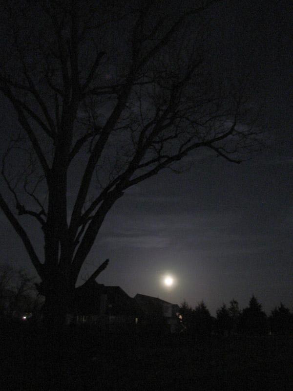 Moon on the Riverside